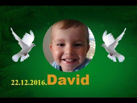 David 22.12.2016.