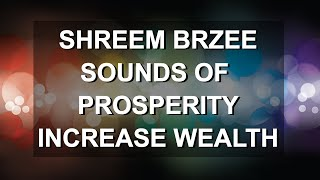 Shreem Brzee: Sounds of Prosperity To Increase Your Wealth