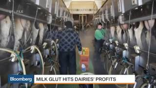 5978 economics agriculture 017 003 Bloomberg America Has Too Much Milk