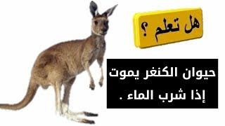 هل تعلم؟معلومات عجيبة عن الحيوانات.سبحان الله