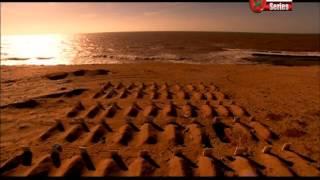 Shouk L9alb الفيلم المغربي - شوك القلب