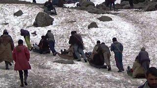 Sledging (Sleigh) At Thajiwas Glacier, Sonamarg, Kashmir, India HD Video