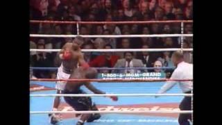 Roy Jones Jr vs Bernard Hopkins 1 & James Toney Highlights