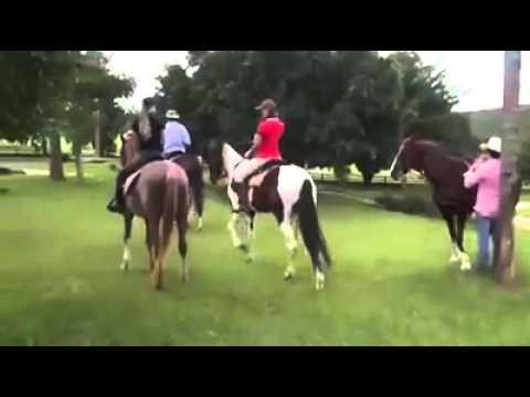 Paula Fernandes em seu cavalo Sereno