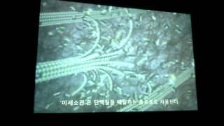 The inner Life of the Cell (ver. Korean)