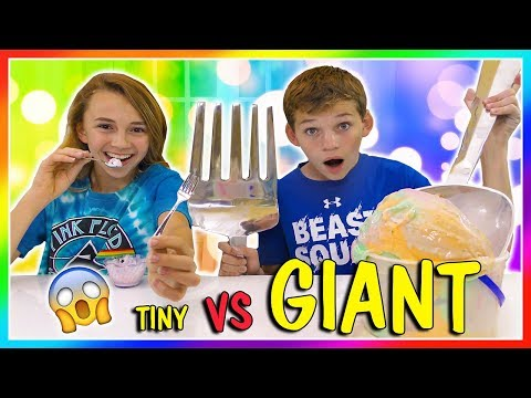 Xxx Mp4 TINY THINGS VS GIANT THINGS SWITCH UP We Are The Davises 3gp Sex