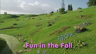 Fun in the Fall  | Custom DVD
