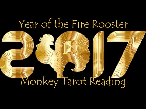 Monkey 2017 Chinese New Year Reading Born 1944 1956 1968 1980 1992 2004 New Beginnings