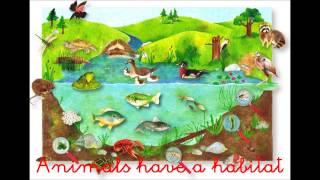 The habitats song