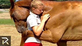 Unbelievable Animals That Saved People