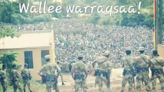 New Oromo music Ittiiqaa Tafarii 2016