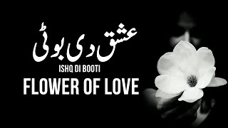 Ishq Di Booti - Flower of Love ∞ a curious mind