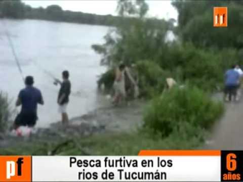 Pesca ilegal en Tucumán