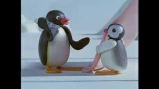 Pingu Episodes Pack