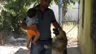 Yozgat - Sorgun- Mehmetbeyli koyu .Turanin klipi.Gelde gozyasimi sil bari