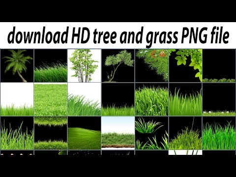 Xxx Mp4 How To Download HD Tree Grass PNG Zip File For PicsArt 2018 3gp Sex