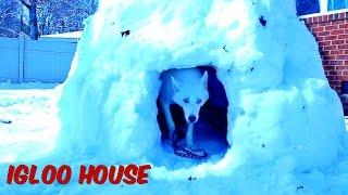 How to Make Igloo House