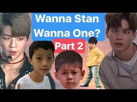 even more reasons to fall in love with wanna one
