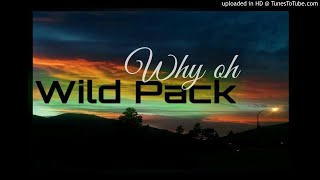 WILD PACK - Why oh (PNG Latest MUSIC 2017)