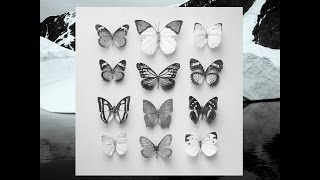Christian Löffler - Young Alaska (Ki Records) [Full Album]