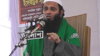 Bangla Waz 2017 Hathajari Madrasa -Allama Mufti Najrul Islam বিষয় :শিয়া মতবাদ