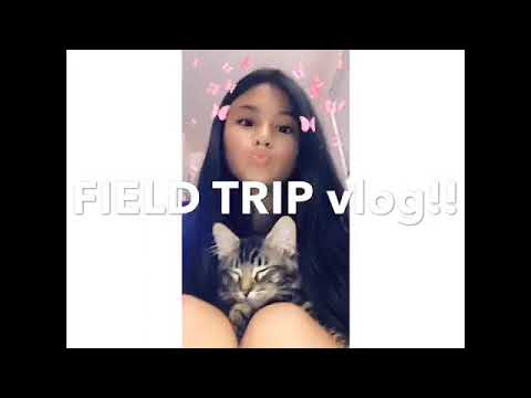 Xxx Mp4 FIELD TRIP VLOG Well Kinda Mostly Bus Ride 3gp Sex