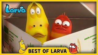 LARVA | BEST OF LARVA | Funny Cartoons for Kids | Cartoons For Children | LARVA 2017 WEEK 22