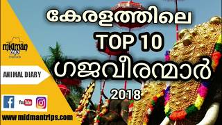 Top 10 Kerala Elephant  2018