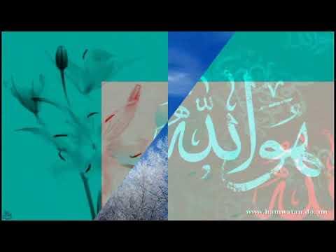 জানি না কত সুন্দর তুমি আল্লাহ Bangla Islamic song
