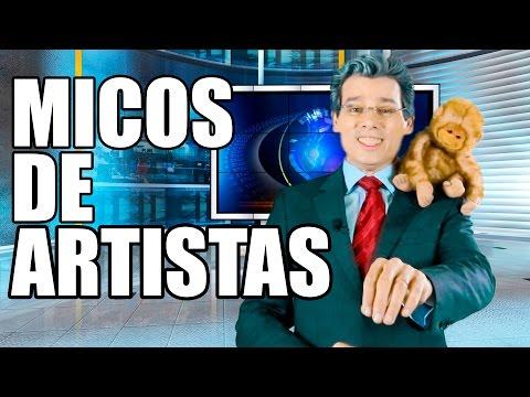 watch MICOS CONSTRANGEDORES DE ARTISTAS - TONTO REPÓRTER