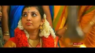 wedding promo- Rahul & Aparna 2016