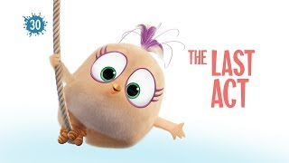 Angry Birds Blues | The Last Act - Ep30 S1 #NEW