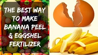 👩🏻🌾 Eggshell Fertilizer + Banana Peel - Potassium & Calcium for Tomatoes & Peppers in Your Garden