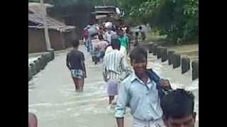 flood chainpur kishanganj