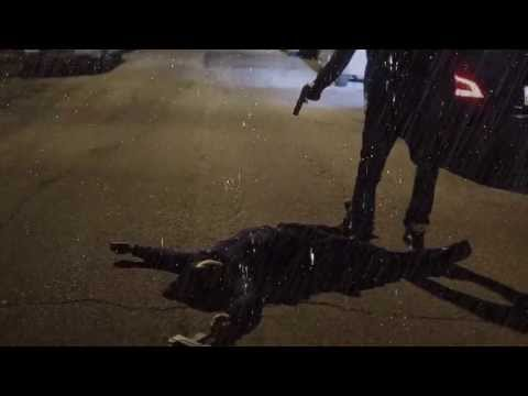 Xxx Mp4 Meek Mill Tony Story 2 Video 3gp Sex