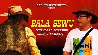 BRANDY WATCH : Ade Sulistio Bagi Ilmu Perawatan BALASEWU & DOWNLOAD Suara Lovebird Durasi Panjang