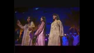 عبدالمنعم العامري - ياطرفه (فيديو كليب) | قناة نجوم
