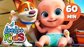 Animal Sounds - Educational Songs for Children | LooLoo Kids