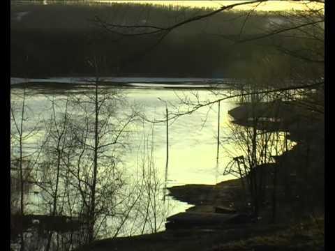 павловск рыбалка воронежская область