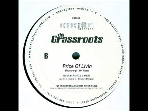 Da Grassroots Price Of Livin Instrumental HQ