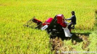 YANMAR Mini Combine Harvester YH150
