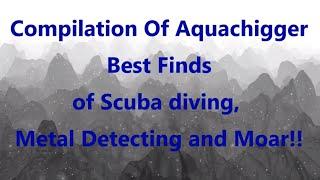 Compilation Of Aquachigger Best Finds