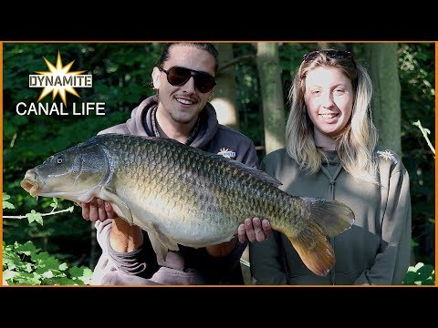 Dynamite Carp Fishing - Our Session: Canal Life