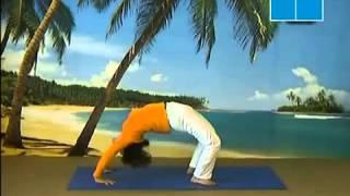 Tư thế bánh xe Thư viện Yoga