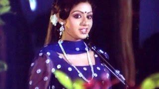 Choosuko Padhilangaa Full Video Song    Anuraga Devatha Movie    N.T.R, Sridevi