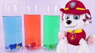 PAW PATROL Science Experiment Learning COLORS - Paw Patrol Full Episodes