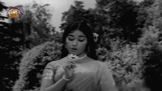 ANR Hit Songs | Aathmeyulu Movie Video Songs | O Chamanti Full Video Song | Vanisri | Mango Music