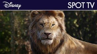Le Roi Lion (2019) - Actuellement au cinéma | Disney