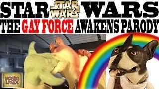 STAR WARS EPISODE VII - THE GAY FORCE AWAKENS BIZARRE PARODY