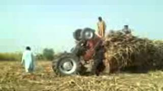 M wli khan Massey Ferguson 385 wonderful power by bahawal khan
